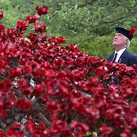 The Weeping Window poppy installation by artist Paul Cummins and designer Tom Piper opens at the Black Watch Castle and Museum in Perth…<br /> The poppy installation Blood Swept Lands and Seas of Red was created to mark the centenary of WW1 and was originally at the Tower of London. Pictured is veteran Cpl John Torrie from Forfar who served with the 1st Battalion The Black Watch<br /> Picture by Graeme Hart.<br /> Copyright Perthshire Picture Agency