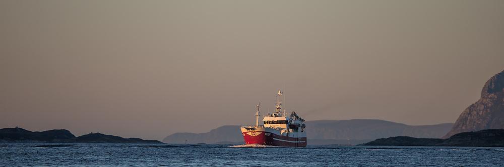 Kamøyfisk er en kystnotbåt som blant annet fisker makrell, NVG-sild og sei. Olsen Gruppen overtok Kamøyfisk 1. april 2009.