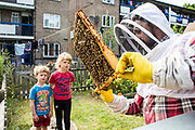 Children watching the bee keeper inspect the honey frames of the bee hives. Urban bee keeping, community garden project, George Downing Estate, Hackney, East London.