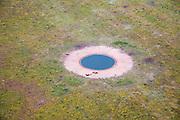 Nederland, Gelderland, Veluwe, 28-06-2006; luchtfoto (25% toeslag Nationaal Park de Hoge Veluwe ( Oud-Reemsterzand heideveld met drinkplaats (drenkplaats) voor wild (zie ook overzichsfoto het vee op de foto: Brandrode runderen en Schotse Hooglanderss; wildakker, hei, natuur, milieu, natuurmonument.luchtfoto (toeslag aerial photo (additional fee required .foto Siebe Swart / photo Siebe Swart