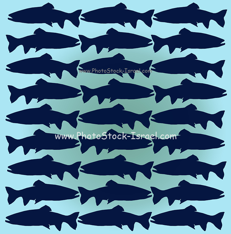 pattern of 27 trout fish silhouettes in a repeating pattern on aquamarine background