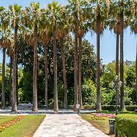 National Gardens - Athens - Greece