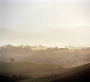 Countryside in the region of Val D'Orcia, Tuscany, Italy