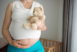 Woman pregnant close-up holding teddy bear stomach