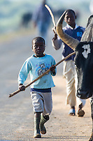 Young cattle herder, Limpopo floodplain, Maputo Province, Mozambique