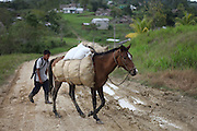 A young Mopan Mayan boy walks home with a loaded horse. Toledo Cacao Growers' Association (TCGA), San Jose, Toledo, Belize. January 25, 2013.