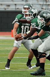 18 October 2014:  Donovan Laible hands off to Anfernee Roberts during an NCAA division 3 football game between the Augustana Vikings and the Illinois Wesleyan Titans in Tucci Stadium on Wilder Field, Bloomington IL
