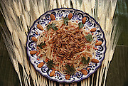 """Mealworm spaghetti (""""Spaghetti a la Melanesia"""") prepared by Julieta Ramos-Elorduy, an entomologist in her Mexico City kitchen. She created a cookbook of recipes using insects. (Man Eating Bugs: The Art and Science of Eating Insects)"""