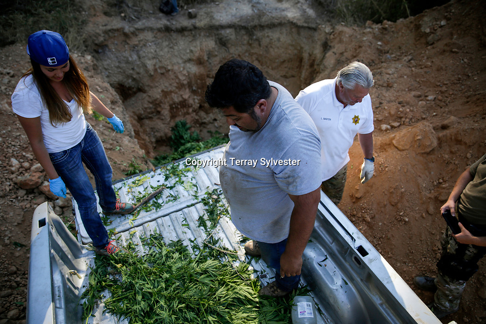 Employees of the Yurok Indian Tribe dispose of confiscated marijuana during a series of raids against growers on the Yurok Reservation on Wednesday, July 7, 2015, near Weitchpec, California. The tribe partnered with federal and local law enforcement to protect salmon habitat in the nearby Klamath River from pollution and water diversions created by marijuana growers.