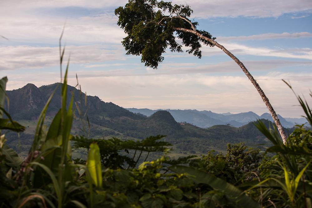 Sunset over a cocoa-growing area near Waslala. Cooperativa de Servicios Agroforestal y Comercialización de Cacao, CACAONICA, is located in Waslala, Nicaragua and is Fairtrade-certified.