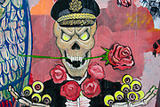 Egypt, Cairo 2014. Mohammed Mansour Street. Revolutionary graffiti. Image of skeleton General with roses and eyeballs.