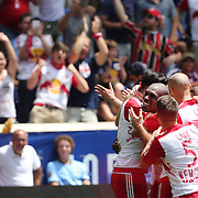 HARRISON, NEW JERSEY- JULY 24: Ronald Zubar #23 of New York Red Bulls is congratulated by team mates after scoring during the New York Red Bulls Vs New York City FC MLS regular season match at Red Bull Arena, Harrison, New Jersey on July 24, 2016 in Harrison, New Jersey. (Photo by Tim Clayton/Corbis via Getty Images)