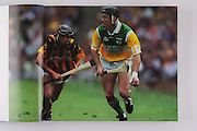 Offalyl's Brian Whelahan and Kilkenny's John Hoyne, 2000 final.