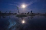 The full moon over the raised bog landscape with bog pool and floating islands, Kemeri National Park (Ķemeru Nacionālais parks), Latvia Ⓒ Davis Ulands   davisulands.com