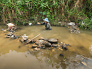 """22 APRIL 2014 - WANG NUA, LAMPANG, THAILAND: BAENG, 60 years old, throws a boulder out of her """"gold mine"""" in the Mae Wang. Villagers in the Wang Nua district of Lampang province found gold in the Mae Wang (Wang River) in 2011 after excavation crews dug out sand for a construction project. A subsequent Thai government survey of the river showed """"a fair amount of gold ore,"""" but not enough gold to justify commercial mining. Now every year when the river level drops farmers from the district come to the river to pan for gold. Some have been able to add to their family income by 2,000 to 3,000 Baht (about $65 to $100 US) every month. The gold miners work the river bed starting in mid-February and finish up  by mid-May depending on the weather. They stop panning when the river level rises from the rains. This year the Thai government is predicting a serious drought which may allow miners to work longer into the summer.    PHOTO BY JACK KURTZ"""