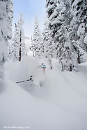 Skiing deep powder at Whitefish Mountain Resort in Montana model released