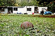 Home of Pam Kohler, mother of Colton Harris-Moore, Camano Island, WA.