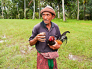 Apr. 22 - UBUD, BALI, INDONESIA:    A man finishes a drink at a cock fight in Ubud, Bali. Photo by Jack Kurtz/ZUMA Press.
