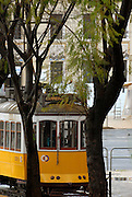 A typical Lisbon tramway, seen between trees. Lisbon's tramways are a well-known touristic attraction. The first carrier took place in 1901 and there are still several ones covering the oldest neighborhoods of the city.