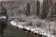 Autumn snowfall along McDonald Creek in Glacier National Park, Montana, USA