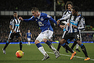 James McCarthy (Everton) and Georginio Wijnaldum (Newcastle United) during the Barclays Premier League match between Everton and Newcastle United at Goodison Park, Liverpool, England on 3 February 2016. Photo by Mark P Doherty.