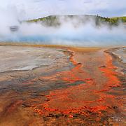 Steaming Geyser Pool - Cyanobacteria Overflow - Yellowstone National Park