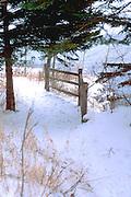 Snowy hiking trail.  Lutsen Minnesota USA