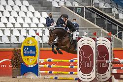 Wouters Seppe, BEL, Ultra Chique vd Axelhoeve Z<br /> Pavo Hengsten competitie - Oudsbergen 2021<br /> © Hippo Foto - Dirk Caremans<br />  22/02/2021