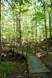 09 October 2013:  Walking bridge along Hiking Trail #2 in  Brown County State Park, Brown County Indiana.