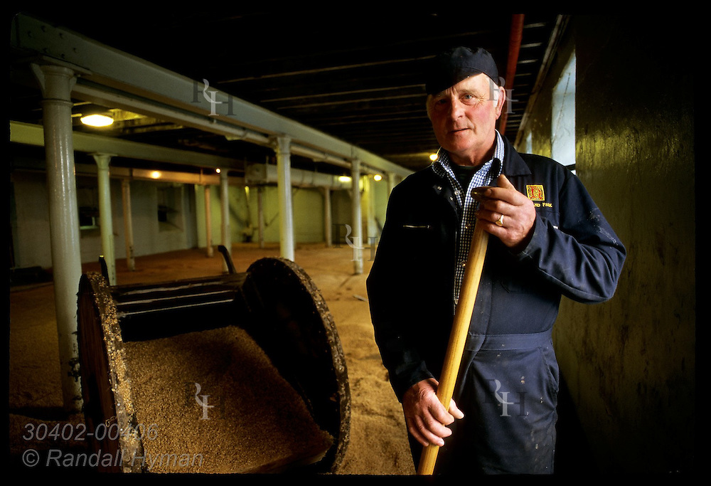 Worker poses amid barley in malting room at the Highland Park Distillery; Kirkwall, Orkney Is. Scotland