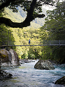 A young boy crosses the Hollyford River on a suspension bridge, Lake Marian Track, Fiordland National Park, Southland, New Zealand