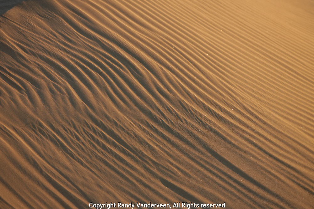 Photo Randy Vanderveen.Glamis,California.The sun rises on the Algadones Sand Dunes in the Imperial Sand Dunes Recreation and Wilderness Area of Southeastern California near Glamis, California.