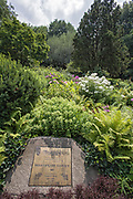 Shakespeare Garden, Central Park, Manhattan, New York