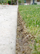 close up of edge of lawn after the grass has just been cut