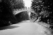 1307C-80. Japanese pedestrian bridge crossing the Columbia River Highway just west of the Latourell Falls highway bridge.