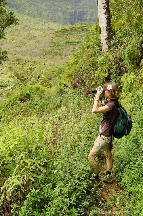 Woman birdwatching on trail to Waikoko Stream, Lihue-Koloa Forest Reserve, Kauai, Hawaii