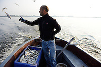 Fisherman from Goleniow, running sea eagle safari tours in the Stettin lagoon, Poland, Oder river delta/Odra river rewilding area, Stettiner Haff, on the border between Germany and Poland