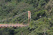 A worker paints the new bridge that  connects  the Amazon jungle between transects 2 and 4 of the Interoceanic Highway
