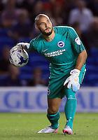 Brighton and Hove Albion goalkeeper Niki Maenpaa