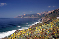 4 August 2006: Watercolor graphic scenic view looking North along Highway 1 through central California along the coast of Big Sur.  Blue sky, surf, yellow weeds and rolling hills.