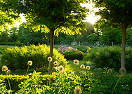 Sunrise in the Italian Garden at Chiswick House Gardens, Chiswick House, Chiswick, London, UK