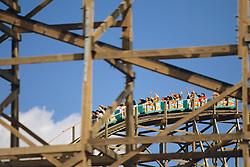 Gwazi Roller Coaster