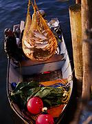 Native fisherman unloading a brailer-full of freshly caught sockeye salmon at Togiak Fisheries, Togiak Bay, Alaska.