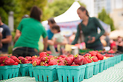 Strawberries from the 2012 Oregon Berry Festival in Portland, Oregon