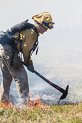 Prescribed burn on the Blackland Prairie at Clymer Meadow Preserve, Texas Nature Conservancy, Greenville, Texas, USA.