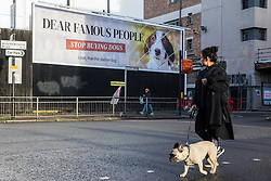 London, UK. 17th November, 2020. A new billboard advertisement produced by PETA UK, a UK-based charity dedicated to establishing and protecting the rights of all animals. The advertisement, which features an image of Max the Shelter Dog, is intended to highlight the issue of celebrities and influencers purchasing 'pedigree' and 'designer' puppies from breeders at a time when thousands of dogs are waiting to be adopted at local shelters and rescue groups, including many acquired during the first coronavirus lockdown and then abandoned.