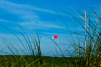 TEXEL- Cocksdorp-TEXELSE GOLF. ILLUSTRATIEF  vlag in de hole op de green. blauwe lucht.COPYRIGHT KOEN SUYK