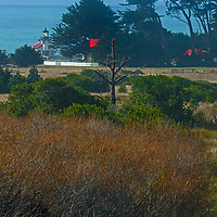 Cypress trees frame the Point Cabrillo Light Station on the Pacific coast of California in Mendocino County.
