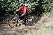 """Mountain biker (Jon Sparks)  descending fast flowing red section on """"The 8"""" red track, Gisburn Forest, Forest of Bowland, Lancashire"""