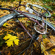 Jay Goodrich captures a self portrait while riding his single speed in Anacortes, Washington during peak fall color.